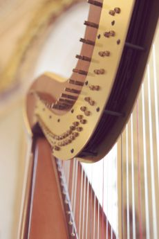 Welsh Harpists Instruments